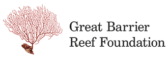 Our Heroes - Great Barrier Reef Foundation // Kiterr.com
